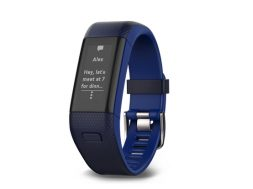 vivosmart HR+, Blue Band, Standard Views,